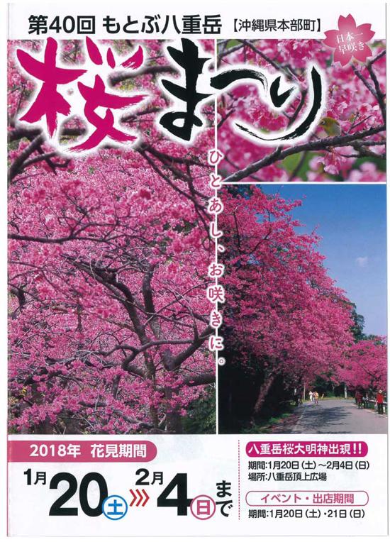 第40回もとぶ八重岳桜まつり